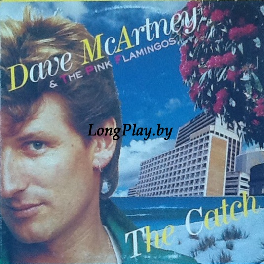 Dave McArtney & The Pink Flamingos - The Catch ++